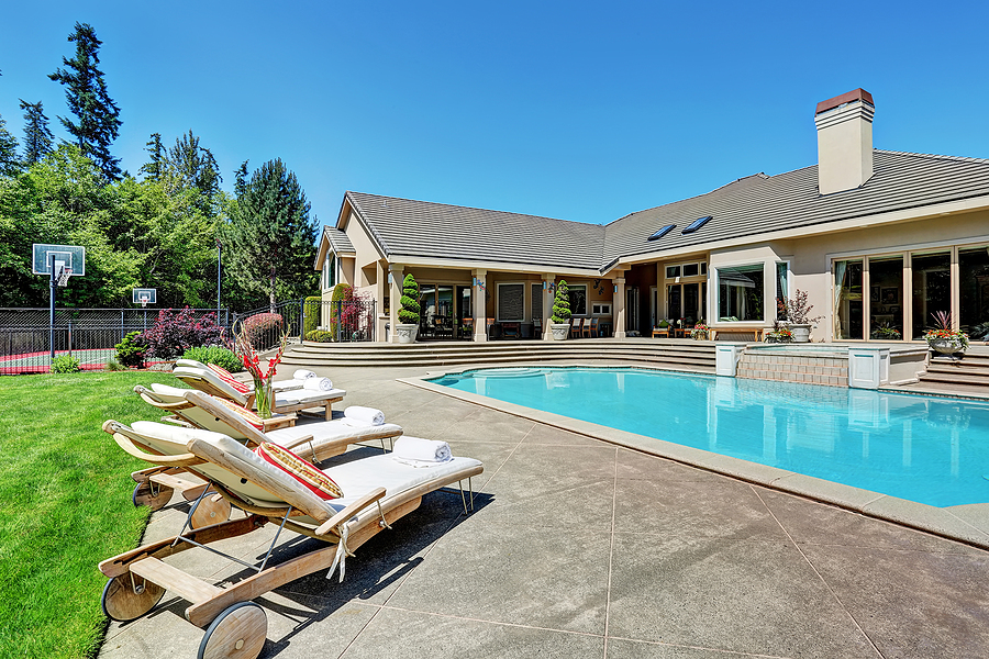 big swimming pool with plant views