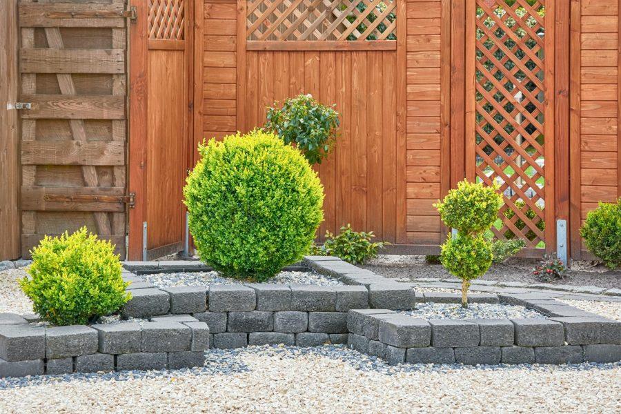 wood walls and concrete bricks for plant landscape